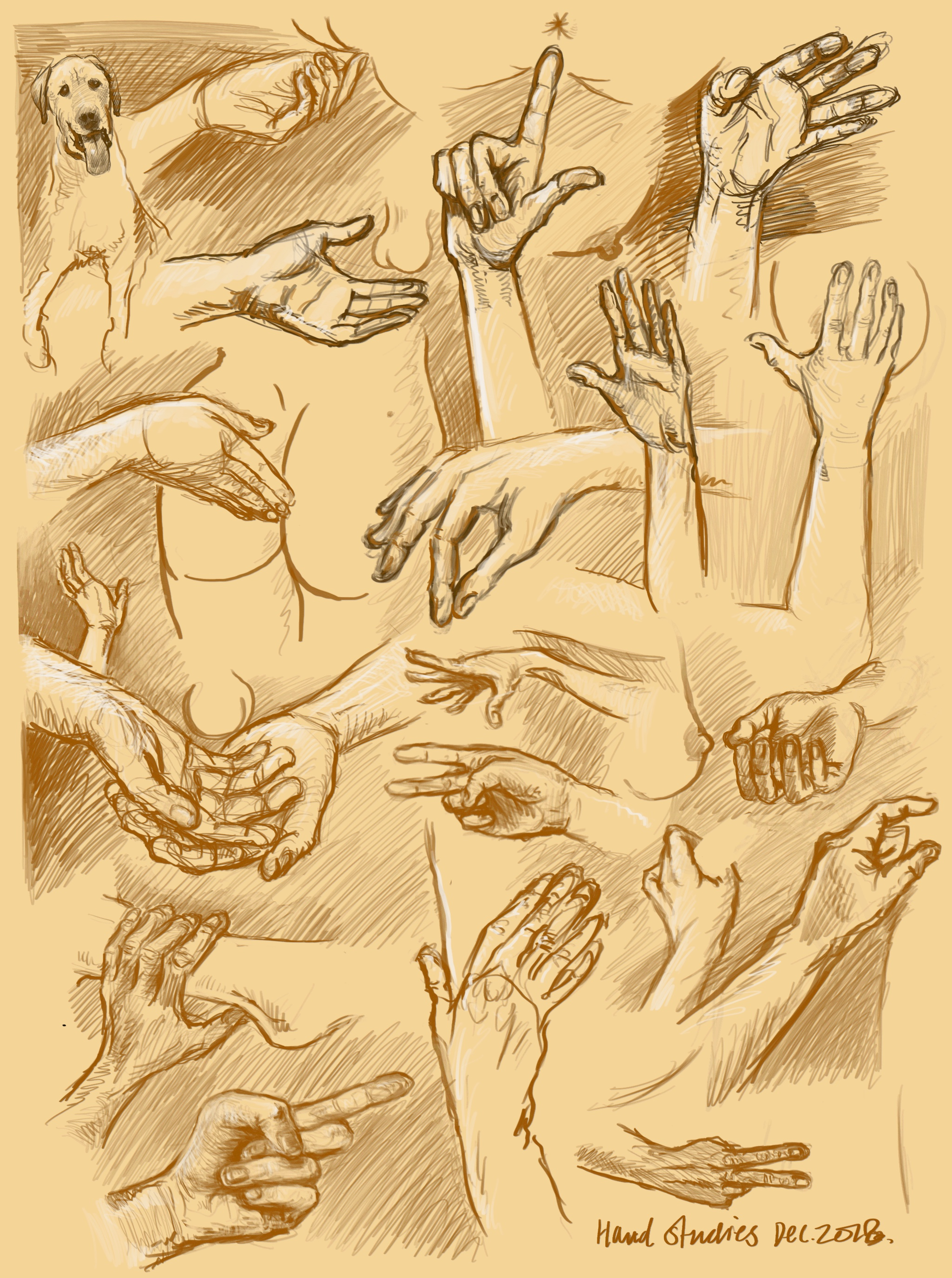 Hand figure studies dec 2018